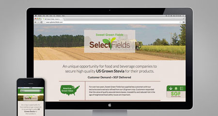 Select Fields website